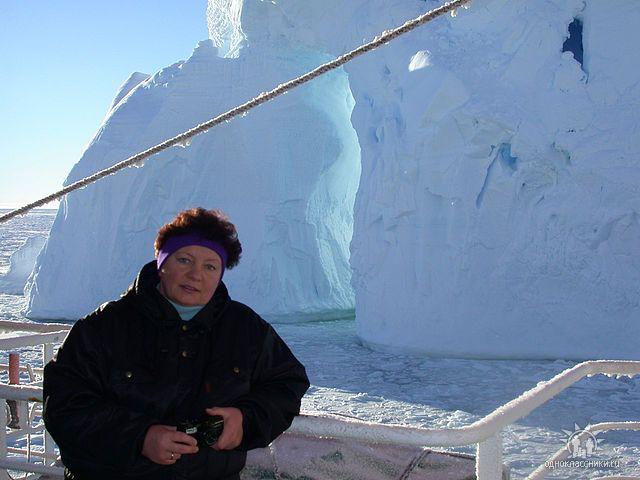Baumann-Arktis